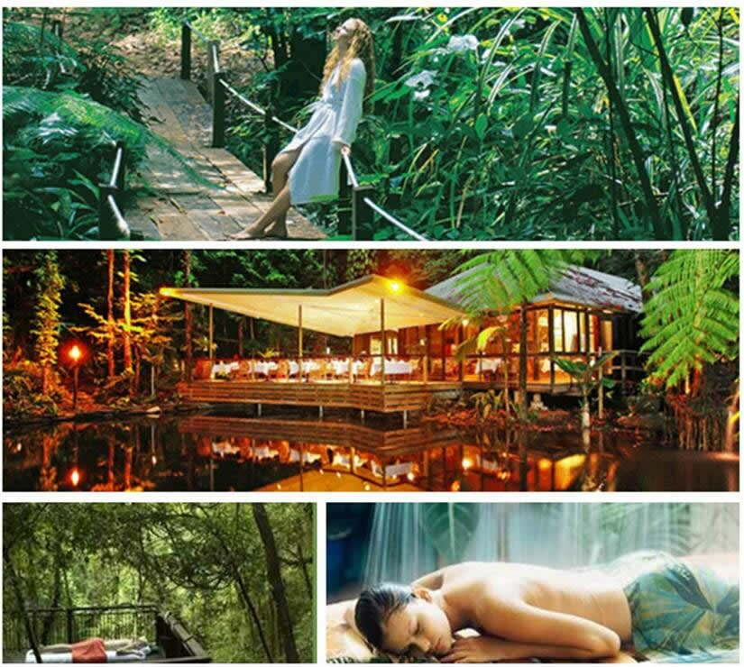 Daintree_Eco_Lodge_Spa